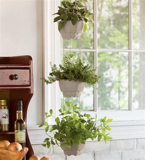 3 Pot Self Watering Hanging Herb Planter Contemporary Indoor Hanging Planters
