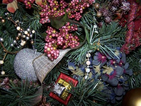 perennial passion hydrangea christmas tree