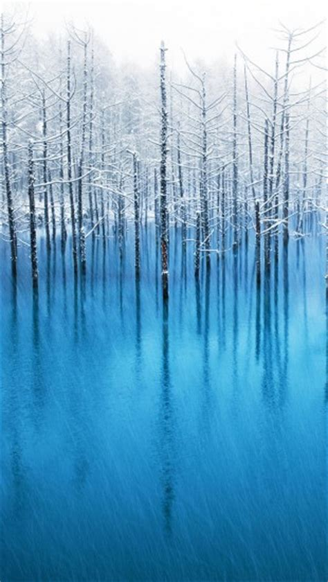 blue pond hokkaido  iphone wallpapers