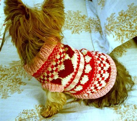 knitting pattern for dog sweater knitted dog sweaters to keep your pooch warm