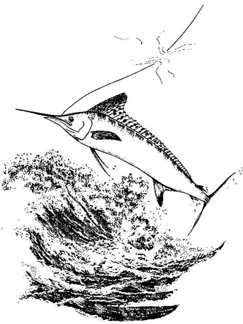 marlin fish coloring pages marlin coloring pages download and print marlin coloring