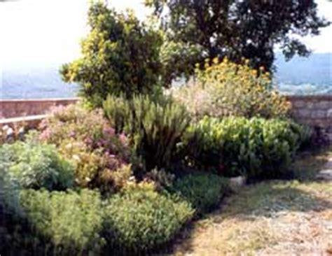 jardines con poco mantenimiento jard 237 n de bajo o poco mantenimiento