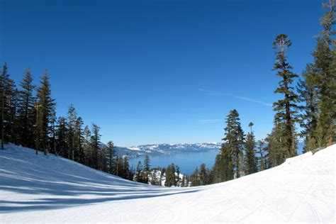 lake tahoe vacation resort front desk phone number marriott s timber lodge timeshare resorts south lake
