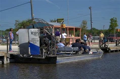 everglades airboat tours fort myers city hall in everglades city fl picture of everglades
