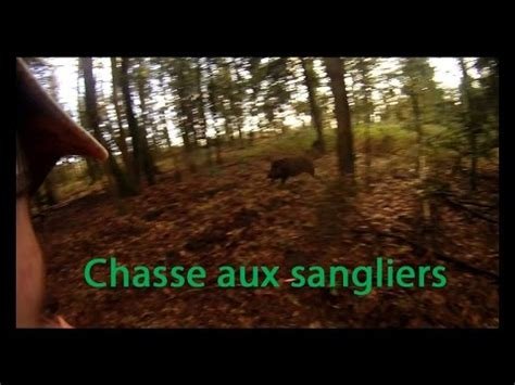 chasse aux sangliers 2014 caméra drift hd 1080p youtube