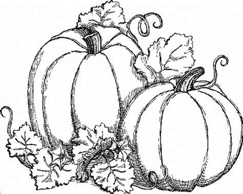 pumpkin tree coloring page coloriages de automne