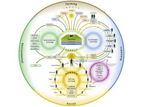 Food Scientist Education by The Of Food Science In Food Systems Research And Education