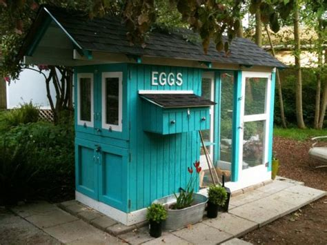 the blue chicken house home design garden