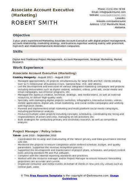 resume format for accountant executive pdf associate account executive resume sles qwikresume