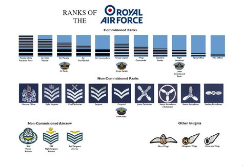 canadian military rank structure for the air force navy and army large a3 ranks of the royal air force raf poster rank