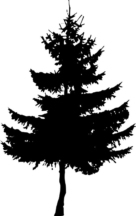 10 Pine Tree Silhouette (PNG Transparent) | OnlyGFX.com
