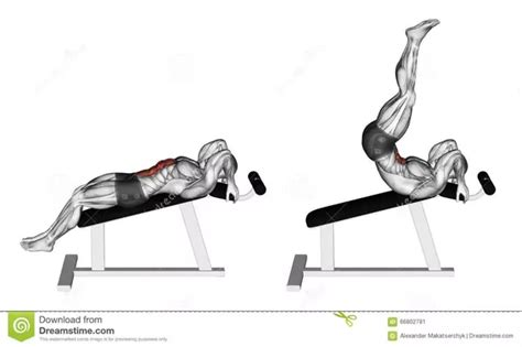 leg raises bench what is a fool proof ab exercise quora