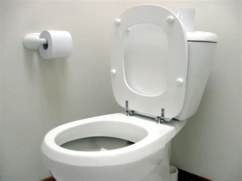 Future Toilet Never Leave The Seat Up Again by 97 Toilet Lid Up You Might Find When Lift Your Raised