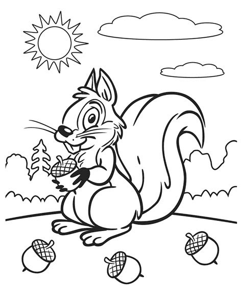 free coloring page squirrel kleurplaat squirrel on a sunny day free printable