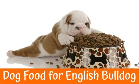 best puppy food for bulldogs best food for bulldog us bones