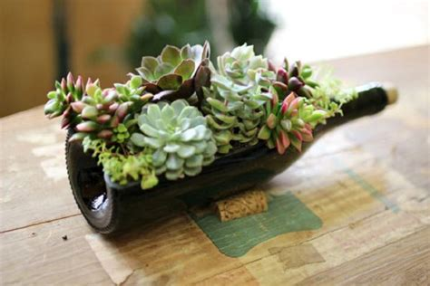 creative recycled bottle planters    today
