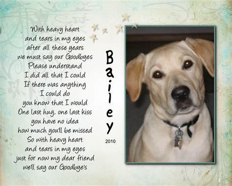 poems about dogs dying pet poems images