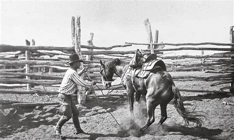 bronco rider swing breaking broncs with the bow gun boys true west magazine