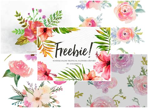 clipart collection free collection of 14 free tropical clipart colour flower