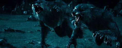 wiki film underworld rise of the lycans werewolf underworld wiki fandom powered by wikia