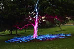 light a tree exposure photo of a tree struck by lightning