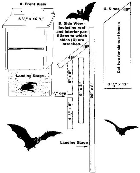 instructions for building a bat house bathouse pinterest