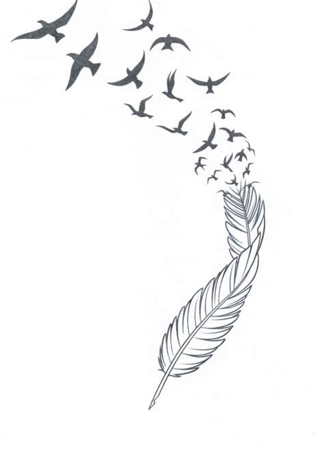 feather tattoo breaking into birds drawn feather bird feather pencil and in color drawn