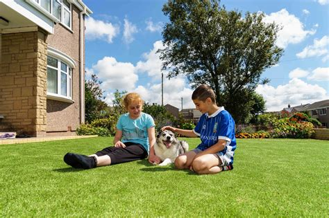 artificial grass for dogs best artificial grass for dogs is it pet friendly safe wee