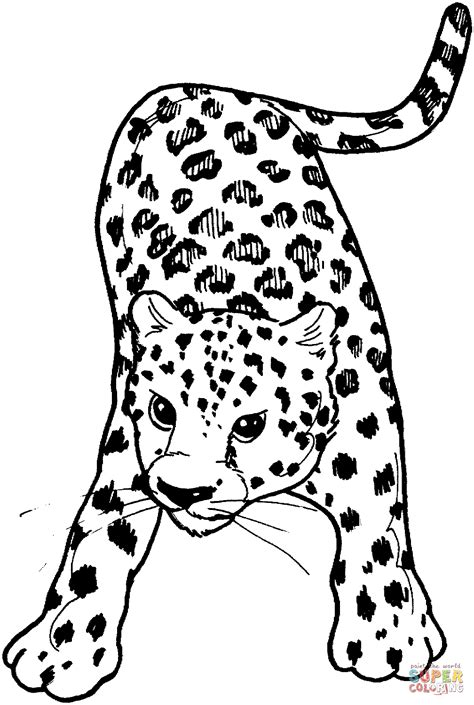 cute leopard coloring pages snow leopard coloring page coloring home