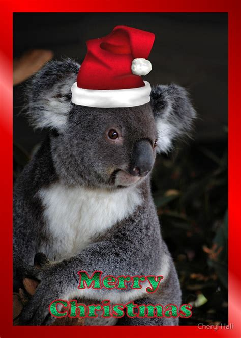 merry christmas card koala santa  cheryl hall redbubble