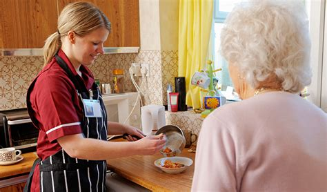 homemaker s services and in home care services for home
