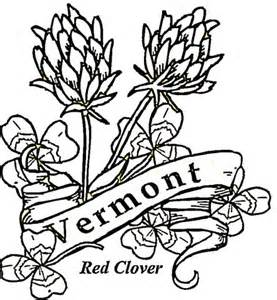 vermont map coloring page vermont state map coloring page coloring pages