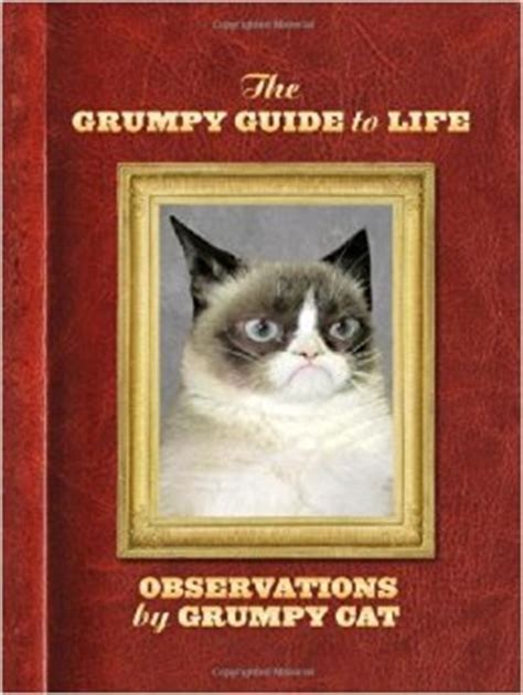 cats are and more observations the grumpy guide to observations from grumpy cat by
