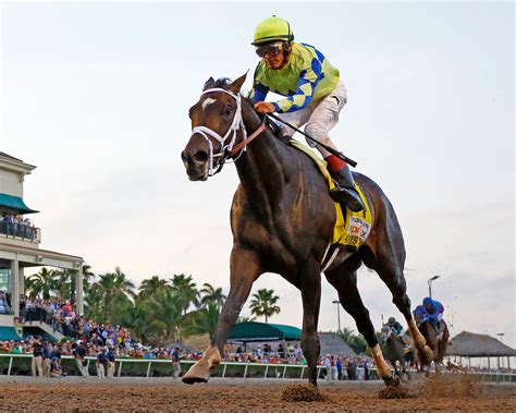 florida derby reveals exciting new ky derby contender