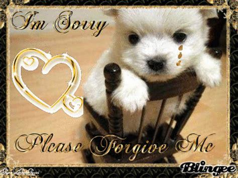 im sorry puppy im sorry puppy gif i m sorry sorry