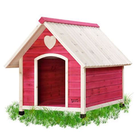 dog house for small dogs amazon com pet squeak arf frame dog house x small pet supplies