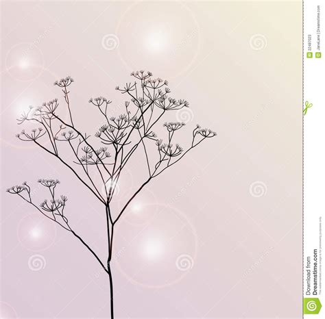 beautiful card floral beautiful card stock illustration image of flower