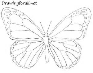 How To Draw Butterfly 25 Best Ideas About Butterfly Drawing On Easy