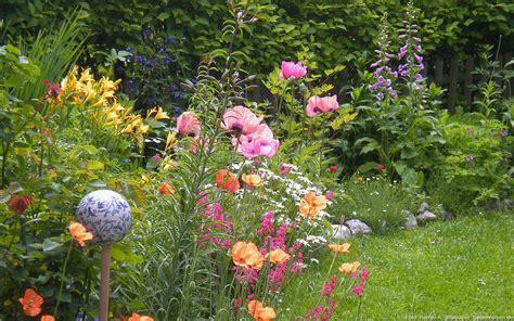 Garten Pflanzen Sommer by Garten Sommer Pflanzen Blumen Rasen