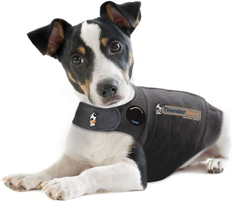 calming vest for dogs anxiety vest shop anxiety treatments thundershirt