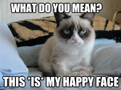 Mean Kitty Meme - what do you mean this is my happy face grumpy cat ii