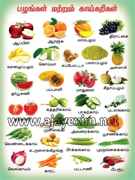 vitamin b vegetables names fruits vegetables in tamil poster buy fruits and