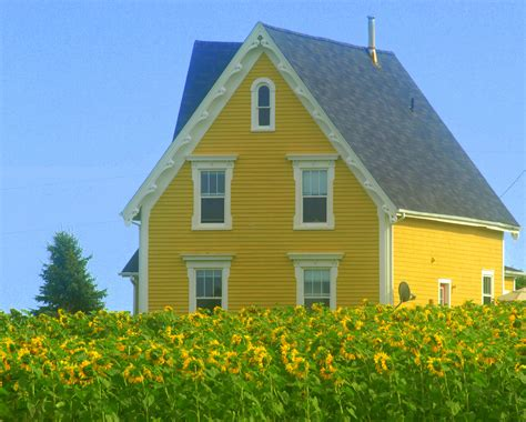Yellow Cottage by Pretty Yellow Cottage Exterior