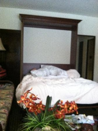 are murphy beds comfortable murphy bed very comfortable picture of pantai inn la