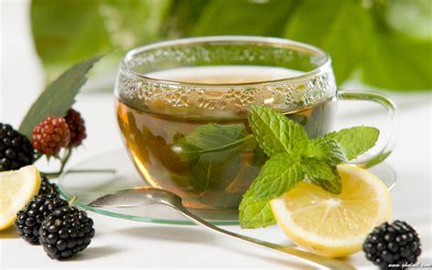 green tea health benefits beautygyaan