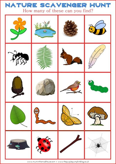 161 best images about nature activities on pinterest 426 best images about nature activities on pinterest