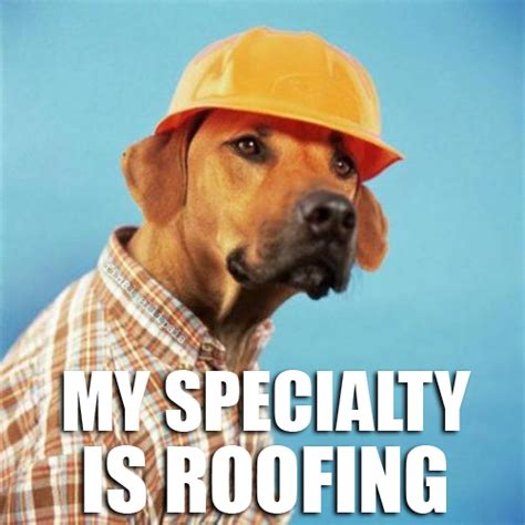 roof dog roofing funny pictures quotes pics photos images