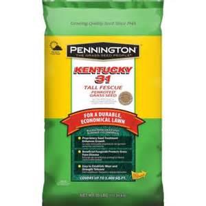 grass seed home depot pennington kentucky 31 25 lb fescue penkoted grass