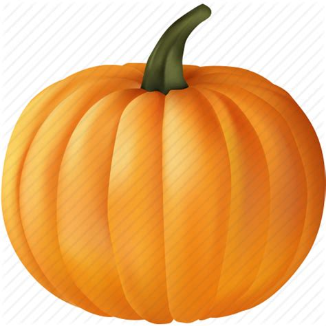 image of pumpkin blank food orange plant pumpkin vegetable
