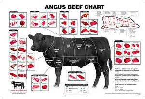 what is the best cut the best beef cuts for slow cooking and a recipe for beef